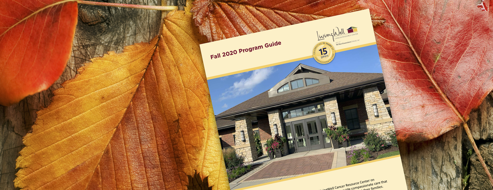 Fall Program Guide is Here!