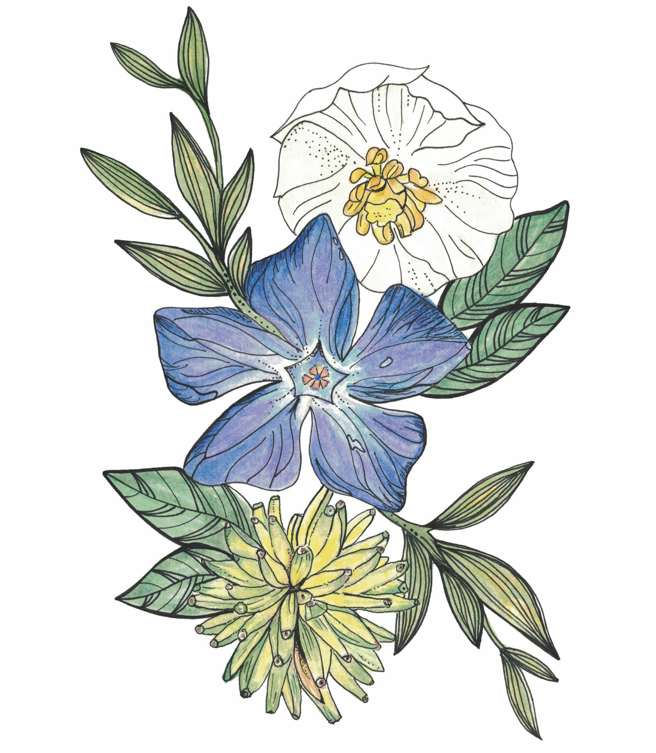 Flower Power-profile-image